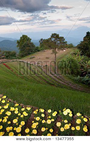 Huaynamdung 公园