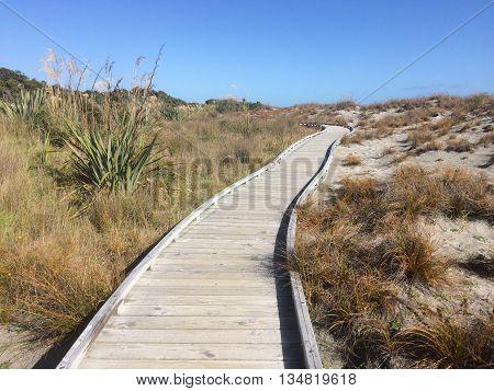 Dune Lake Walk at Ship Creek Tauparikaka
