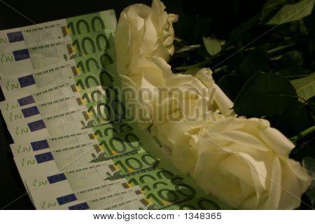 Whites Roses With Euros