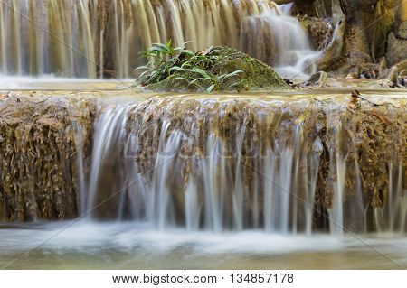 Little tree over tropical stream waterfalls, natural landscape background