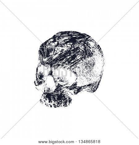 Black and white human skull. Hand drawn Jpeg version.