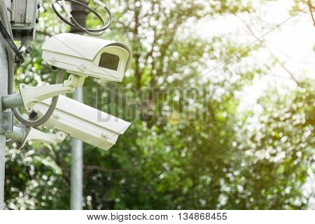 Security Camera or CCTV in  the park