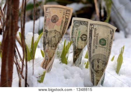 Frühling finanzielles Wachstum