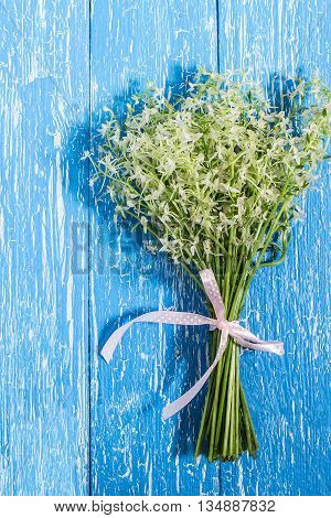 Delicate bouquet of wild orchids also known as Lesser Butterfly Orchid (Platanthera bifolia) on a blue wooden table. Vertical poster