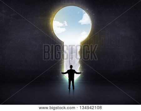 businessman looking a big key, solution concept