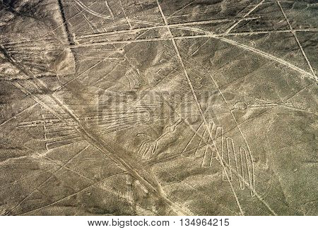 Geoglyphs And Lines In The Nazca Desert.  Peru