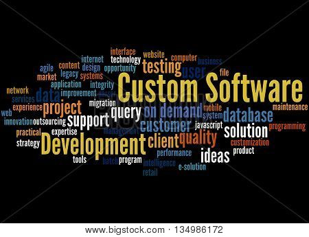 Custom Software Development, Word Cloud Concept 7