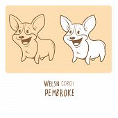 Card with cute cartoon dog breed Welsh Corgi Pembroke. Children's illustration. Little puppy. Funny baby animal. Vector image. Two variants contour  image, transparent background and white fill. poster