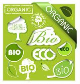 Set of bio, eco, organic elements - labels, stickers, stamps, ribbons poster
