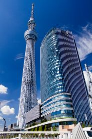 Tokyo, Japan - September 26 : View of Tokyo Skytree under a blue sunny sky. September 26, 2014 in Tokyo, Japan. The Tokyo Skytree , A new television broadcasting tower and landmark of Tokyo
