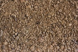 Soil is a natural clay minerals are naturally many species suitable for planting the soil is fertile plants grow well.