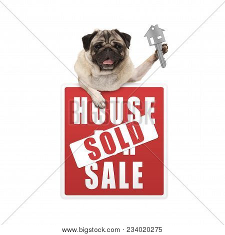 Happy Pug Puppy Dog Hanging With Paws On Red House Sold Sign Holding Up House Key, Isolated On White