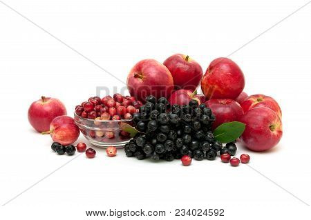 Apples, Cranberries And Chokeberry On A White Background. Horizontal Photo.