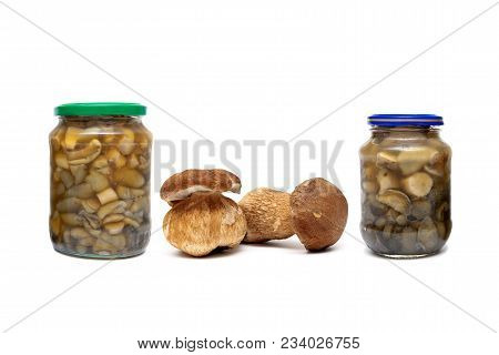 Fresh And Pickled Forest Mushrooms On A White Background. Horizontal Photo.