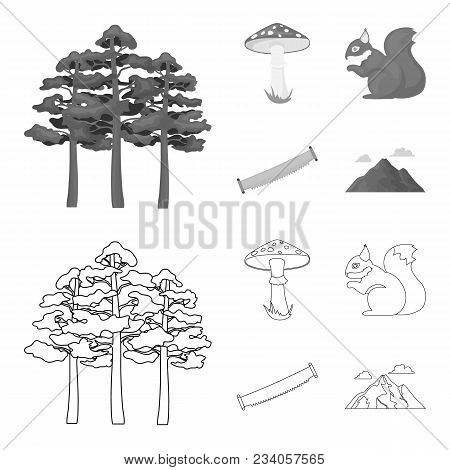 Pine, Poisonous Mushroom, Tree, Squirrel, Saw.forest Set Collection Icons In Outline, Monochrome Sty