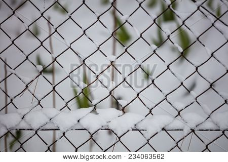 White snow on wire metal mesh fence. Blurred snowy nature on winter time, close up view.