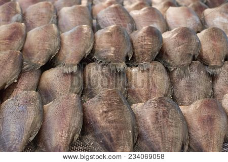 Trichogaster Pectoralis Fish Food Fresh Closeup On Market