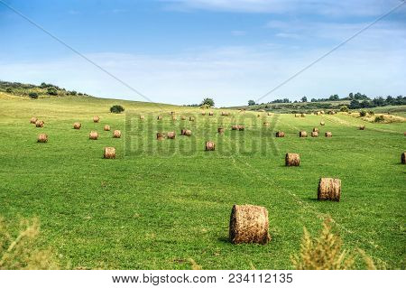Hay Bail Harvesting In Golden Field Landscape.