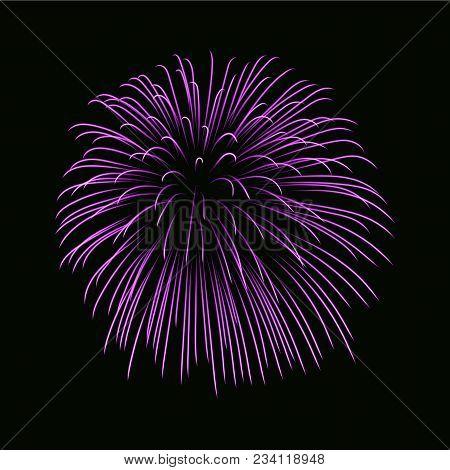 Beautiful Pink Firework. Bright Firework Isolated Black Background. Light Purple Decoration Firework