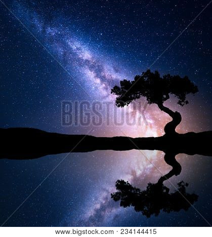 Night Scene With Milky Way And Old Tree On The Mountain Near The Lake With Sky With Stars Reflection