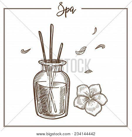 Spa Salon Aromatherapy Treatment Sketch Icon. Vector Isolated Aroma Sticks In Bottle With Essential