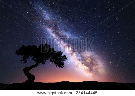 Milky Way With Alone Crooked Tree On The Hill. Colorful Night Landscape With Bright Milky Way, Starr