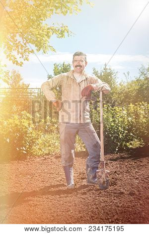 Farmer Working In The Garden With The Help Of A Shovel Digging The Ground, On A Sunny Day