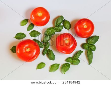 Fresh Tomatoes And Green Basil Leaves On Gray Background. Top View.