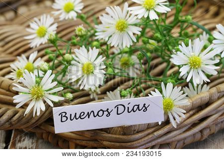 Buenos Dias (which Means Good Morning In Spanish) With Chamomile Flowers On Rustic Wooden Surface