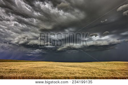 Prairie Storm Saskatchewan Shelf Cloud Danger Warning