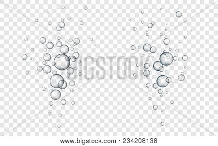 Water Bubbles Vector Illustration. Abstract Bubbles. Transparent Background With Bubbles.