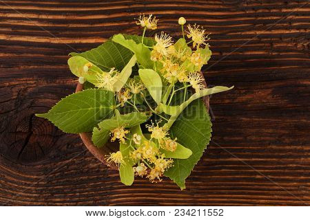 Linden Flowers With Leaves In Wooden Bowl On Wooden Table From Above. Tilia.