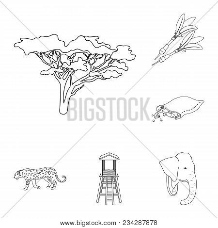 African Safari Outline Icons In Set Collection For Design. Trophies And Equipment For Safari Vector