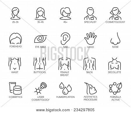 Thematic Set Icons Isolated. Avatar Of Women Of Different Ages, Doctor, Beautician, Facial Parts, Fe