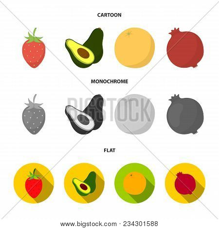 Strawberry, Berry, Avocado, Orange, Pomegranate.fruits Set Collection Icons In Cartoon, Flat, Monoch