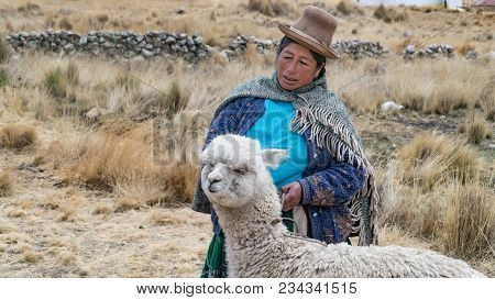 Arequipa, Peru - September 2017: Peruvian Woman With Lama And Alpaca.