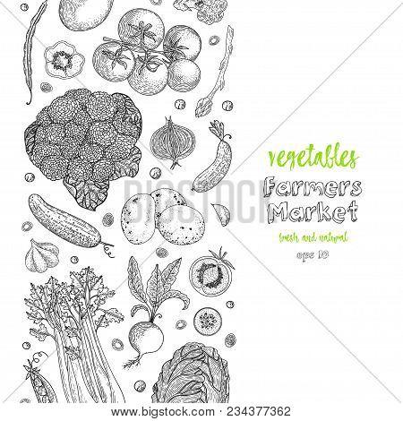 Organic Vegetables Food Banners. Healthy Food. Engraving Sketch Vintage Style. Vegetarian Food For D