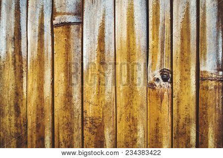 Texture Of A Wall Of Yellow Bamboo. Close Up. A Wall Of Bamboo Stalks Yellow Varnished.