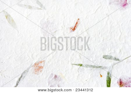 Mulberry paper with flower and wood pulp