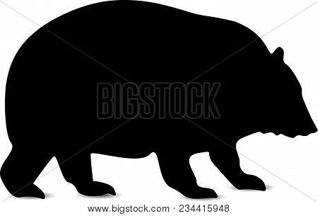 Silhouette Of Himalayas Bear In Black Tones.