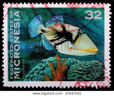 32 Centů známka vytištěna ve Federativních státech Mikronésie