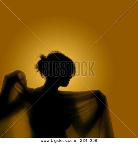 Girl With Veil
