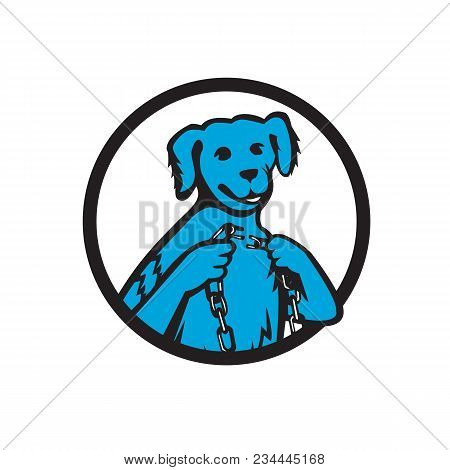 Mascot Icon Illustration Of A Blue Merle Dog Holding A Chain With One Link Chain Broken Set Inside C