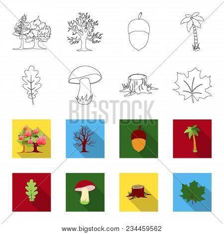 Oak Leaf, Mushroom, Stump, Maple Leaf.forest Set Collection Icons In Outline, Flet Style Vector Symb