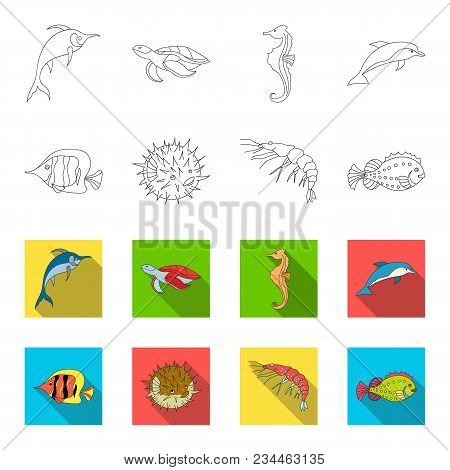 Shrimp, Fish, Hedgehog And Other Species.sea Animals Set Collection Icons In Outline, Flet Style Vec
