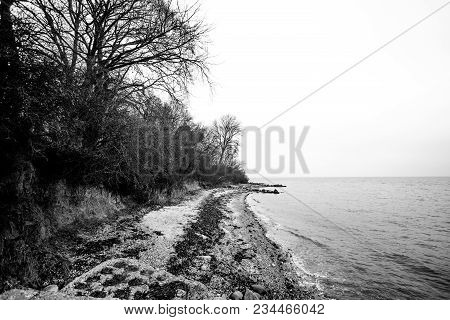 Black And White Photo Of A Coast In The Fall With Waves Coming In On The Beach
