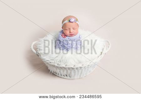 Lovely newborn baby girl wrapped in a purple cocoon