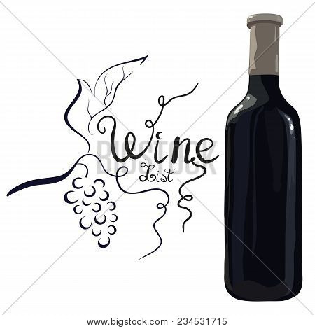 Bottle Of Red Wine With Hand Drawn Grapes And Lettering Wine List On White Background. Vector. Water