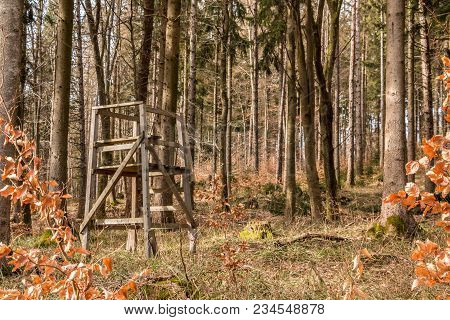 Raised Hide In The Middle Of The Forest