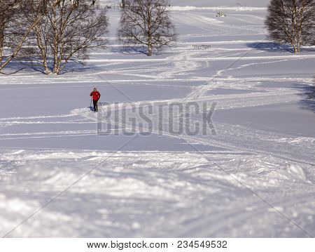 Umea, Sweden On February 22. View Of An Unidentified Cross-country Skier In Action On February 22, 2